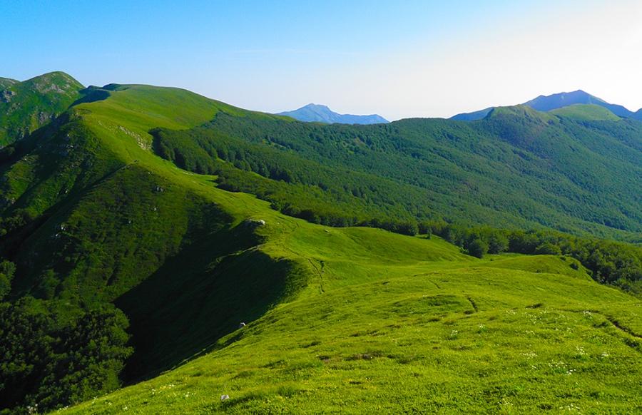 T2. Vista dal Monte Tondo ©